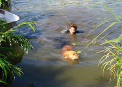 cool dog Wasser 8
